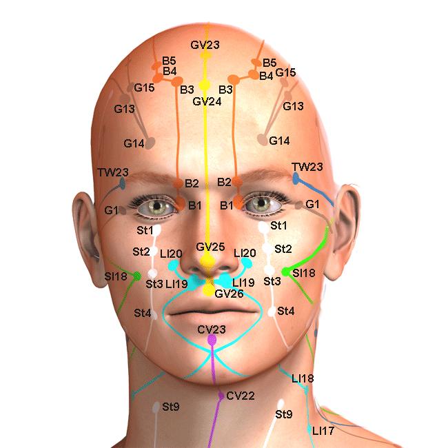 pontos-da-face-1