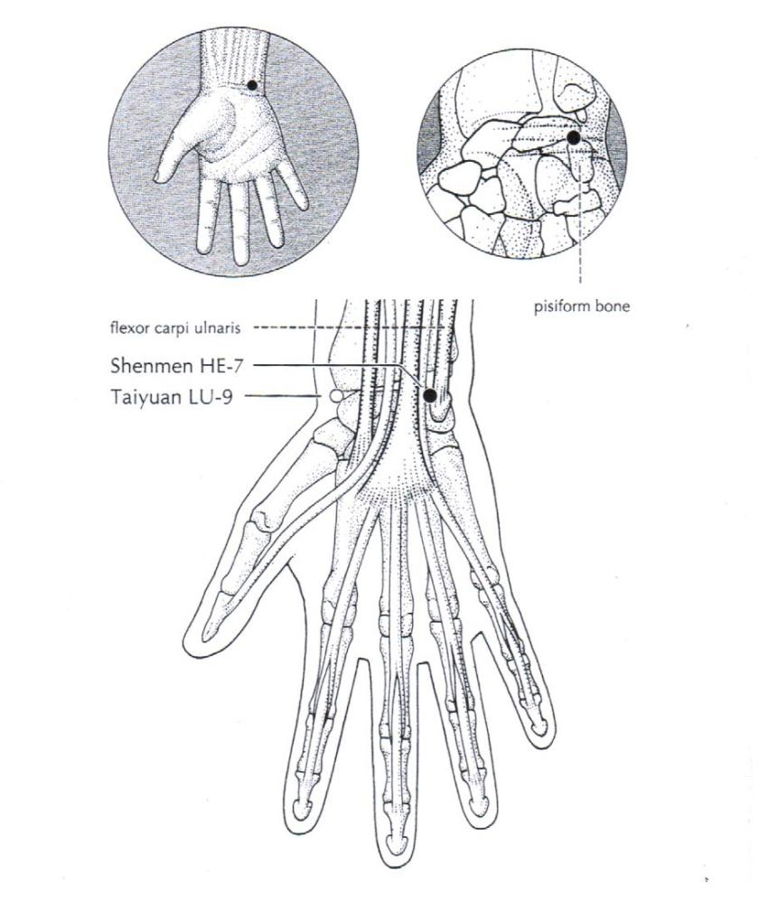 HT7 (1)