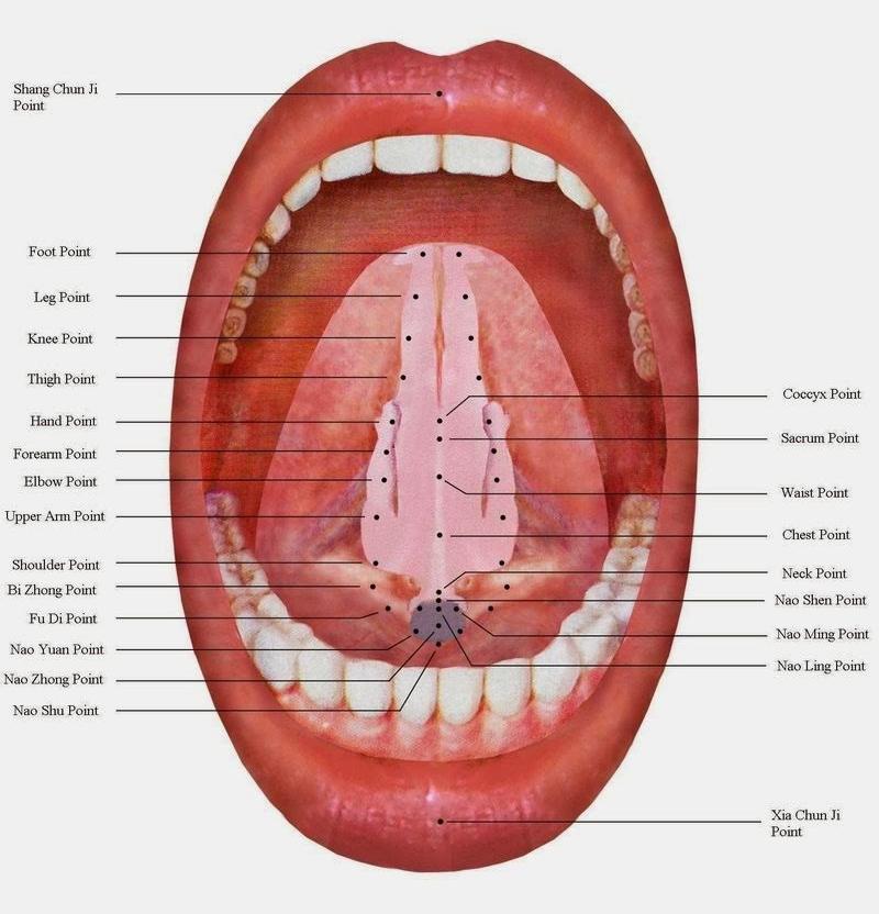 tongue acu image