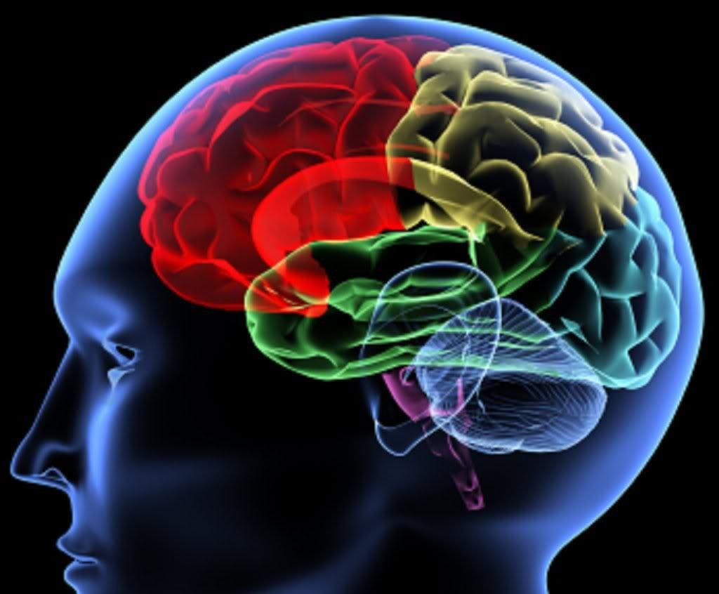 Rede de modo padrão como um substrato neural da acupuntura: evidências, desafios eestratégia